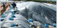 Bùn thải từ quá trình xử lý nước