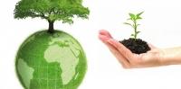 Công văn 4228 hướng dẫn lập báo cáo giám sát môi trường
