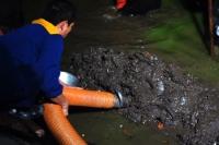 Cung cấp bùn vi sinh chất lượng tốt