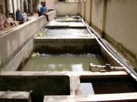 Nhận vận hành trạm xử lý nước thải ở Tp Hồ Chí Minh, Bình Dương, Đồng Nai, Tây Ninh, Bình Phước và các địa phương khác